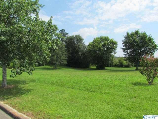 25 Silver Lakes Blvd, Glencoe, AL 35905 (MLS #1774980) :: Rebecca Lowrey Group