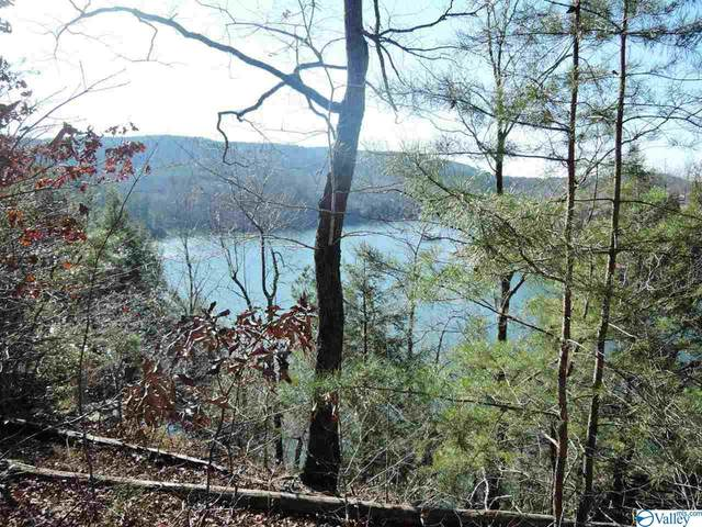 119 Sipsey Overlook Road, Double Springs, AL 35553 (MLS #1775037) :: Coldwell Banker of the Valley