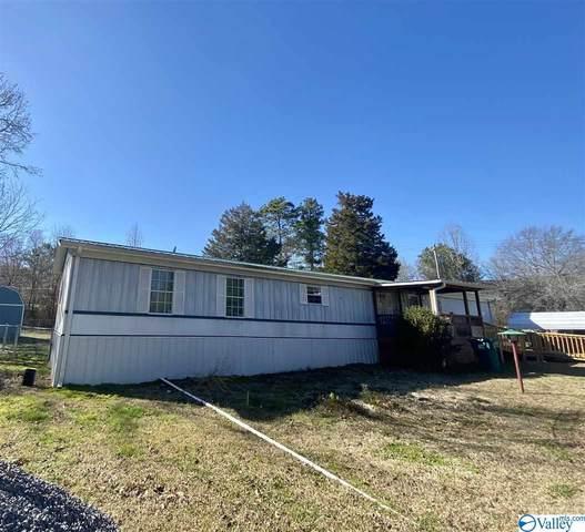 1115 County Road 249, Leesburg, AL 35983 (MLS #1775285) :: LocAL Realty