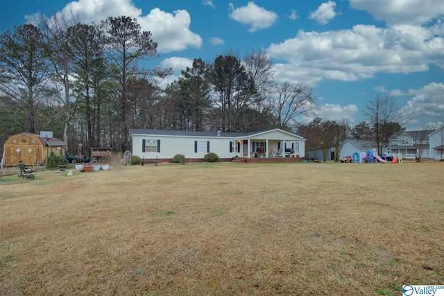 543 County Road 501, Moulton, AL 35650 (MLS #1775307) :: MarMac Real Estate