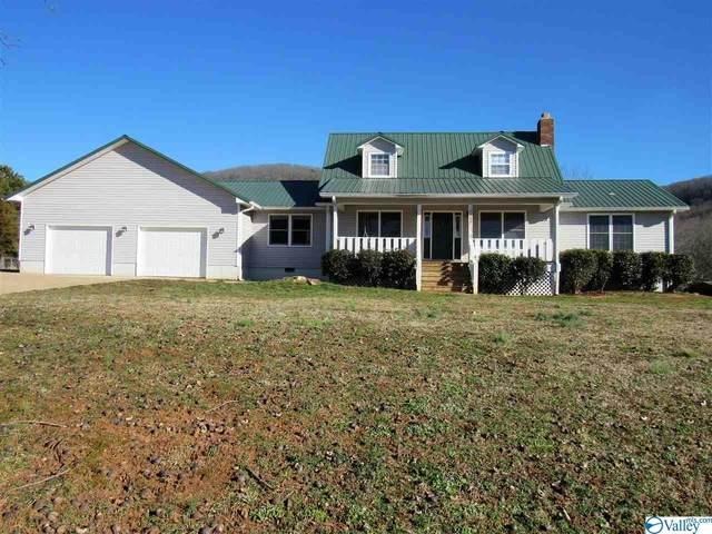 5603 Martin Avenue, Fort Payne, AL 35967 (MLS #1775309) :: Southern Shade Realty