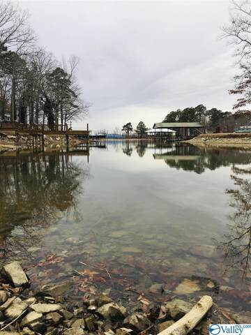 0 County Road 44, Cedar Bluff, AL 35959 (MLS #1775513) :: LocAL Realty