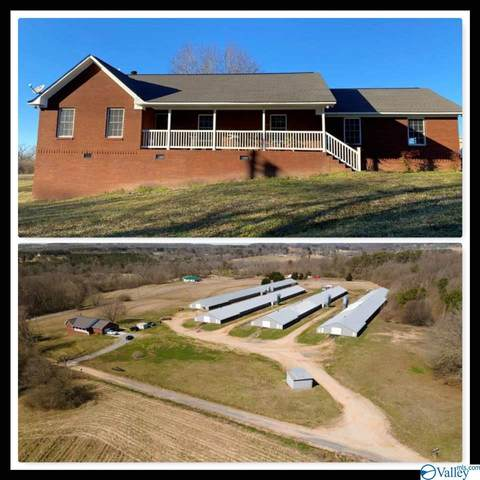 274 Sierra Drive, Horton, AL 35980 (MLS #1775597) :: Coldwell Banker of the Valley
