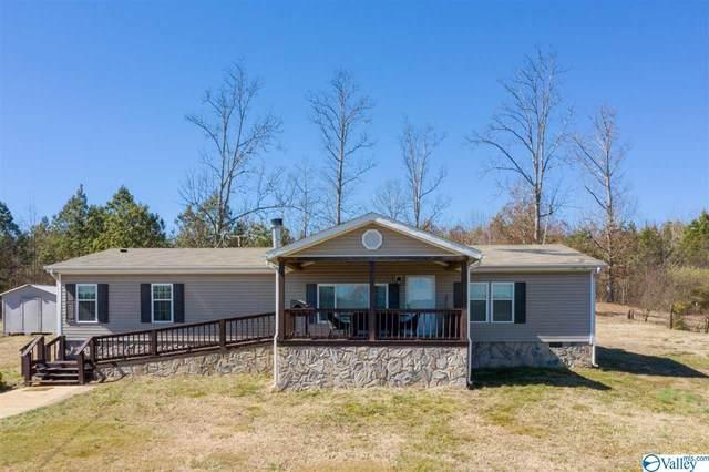 23279 Alabama Highway 71, Flat Rock, AL 35966 (MLS #1775657) :: MarMac Real Estate