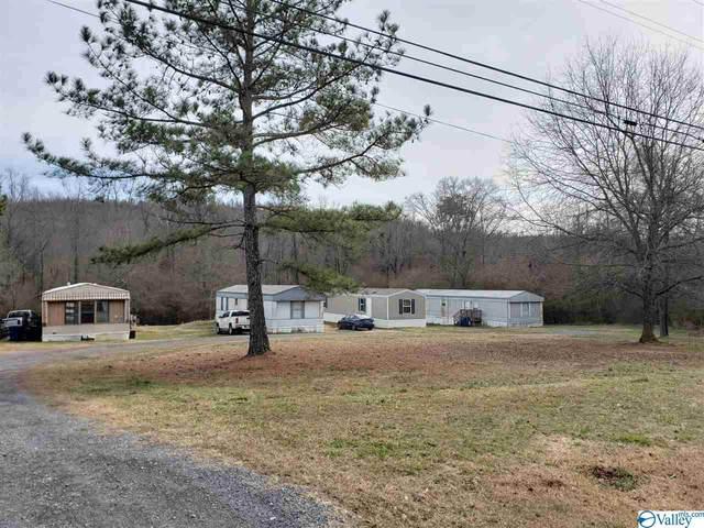5365 Alabama Highway 79, Guntersville, AL 35976 (MLS #1775751) :: RE/MAX Distinctive | Lowrey Team