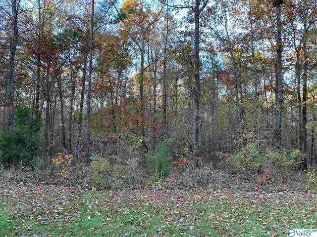 00 County Road 642, Cedar Bluff, AL 35959 (MLS #1775802) :: LocAL Realty