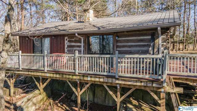 17934 County Road 89, Mentone, AL 35984 (MLS #1775812) :: LocAL Realty
