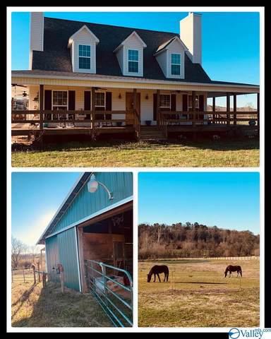 5146 Whitesville Road, Albertville, AL 35950 (MLS #1775826) :: LocAL Realty