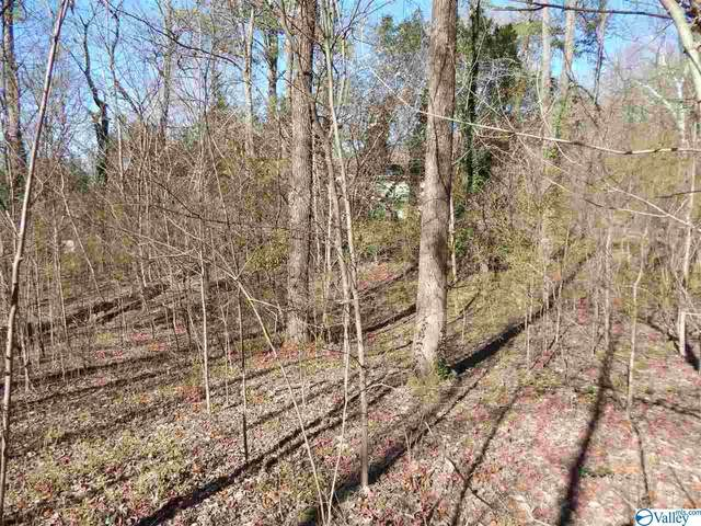 Wilborn Avenue, Fort Payne, AL 35967 (MLS #1775848) :: LocAL Realty