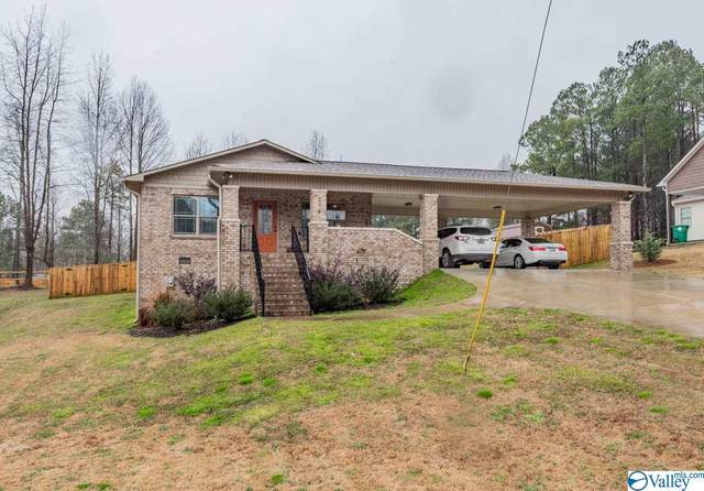 234 County Road 1408, Cullman, AL 35058 (MLS #1775893) :: MarMac Real Estate