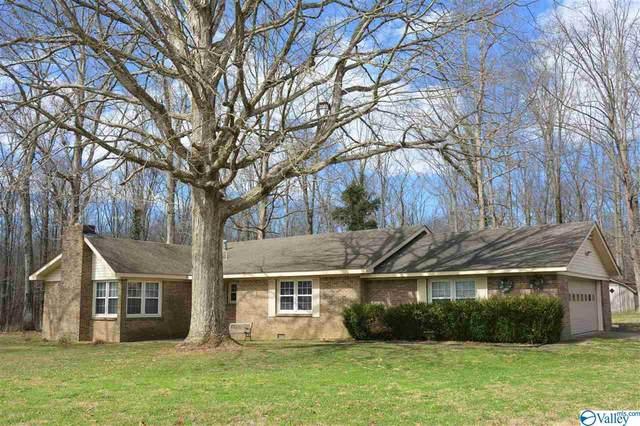 7995 County Road 8, Woodville, AL 35776 (MLS #1775953) :: MarMac Real Estate