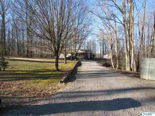 1357 County Road 107, Skyline, AL 35768 (MLS #1775960) :: LocAL Realty