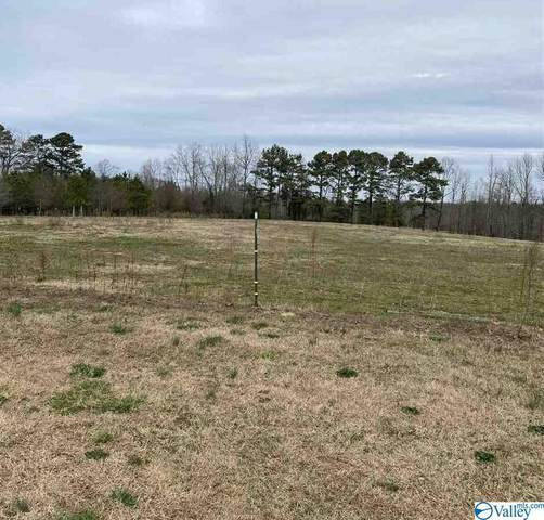 3311 Hulaco Road, Joppa, AL 35087 (MLS #1775983) :: MarMac Real Estate