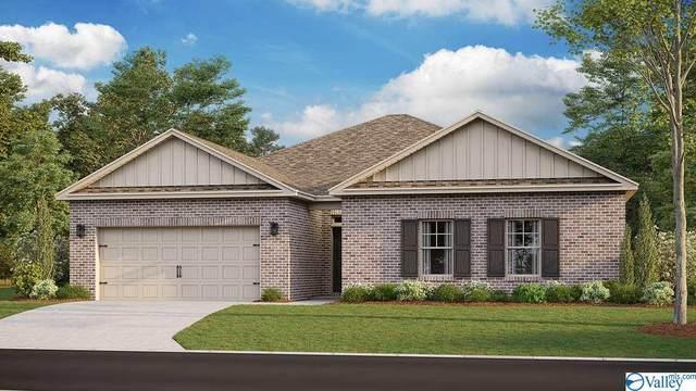 145 Blackburn Trace, Huntsville, AL 35811 (MLS #1776003) :: MarMac Real Estate