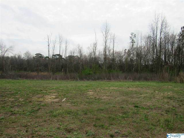 11800 Alabama Highway 227, Geraldine, AL 35974 (MLS #1776106) :: Legend Realty