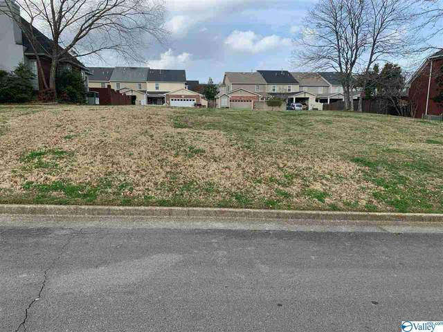 1557 Blackhall Lane, Decatur, AL 35601 (MLS #1776493) :: Green Real Estate
