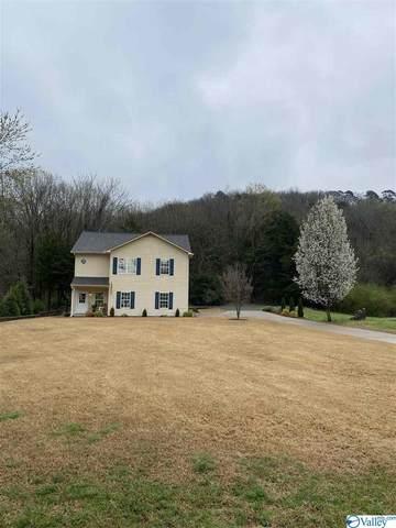850 Signal Point Road, Guntersville, AL 35976 (MLS #1776753) :: Green Real Estate