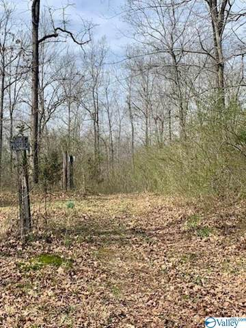 0 County Road 241, Moulton, AL 35650 (MLS #1776848) :: MarMac Real Estate