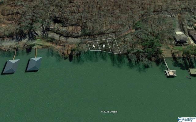 Tract C Snug Harbor Road, Grant, AL 35747 (MLS #1777015) :: Amanda Howard Sotheby's International Realty