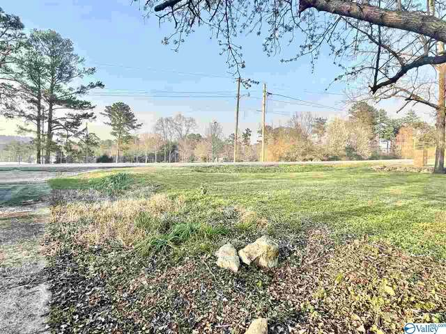 116 Body Street, Gadsden, AL 35904 (MLS #1777031) :: Coldwell Banker of the Valley