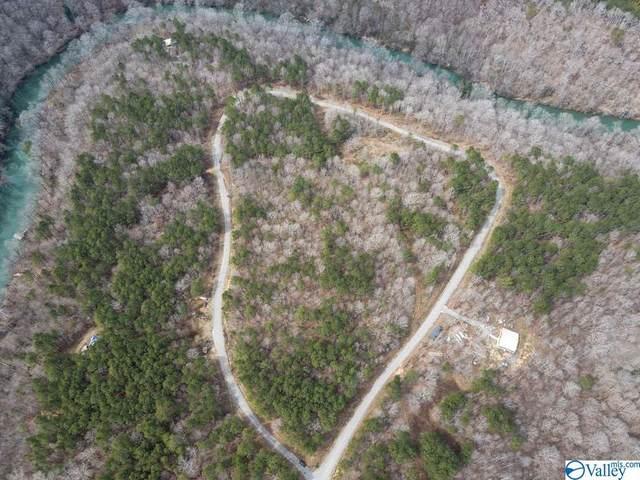 Lot #8 Turkey Bend Drive, Addison, AL 35540 (MLS #1777139) :: RE/MAX Unlimited
