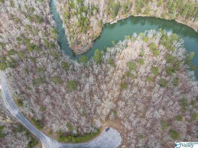 Lot #4 Winding Creek Subdivision, Arley, AL 35541 (MLS #1777148) :: MarMac Real Estate