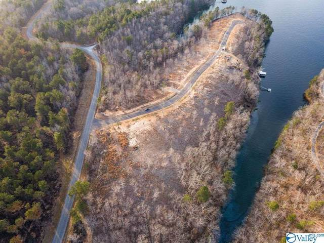 Lot #22 Grand Vista Drive, Bremen, AL 35033 (MLS #1777174) :: Green Real Estate