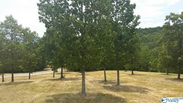 Lot 47 County Road 767, Cedar Bluff, AL 35959 (MLS #1777261) :: Amanda Howard Sotheby's International Realty