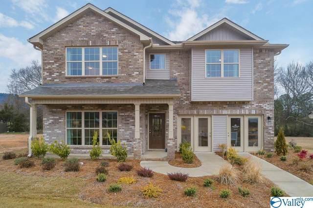 107 Pitalo Street, Madison, AL 35758 (MLS #1777267) :: MarMac Real Estate