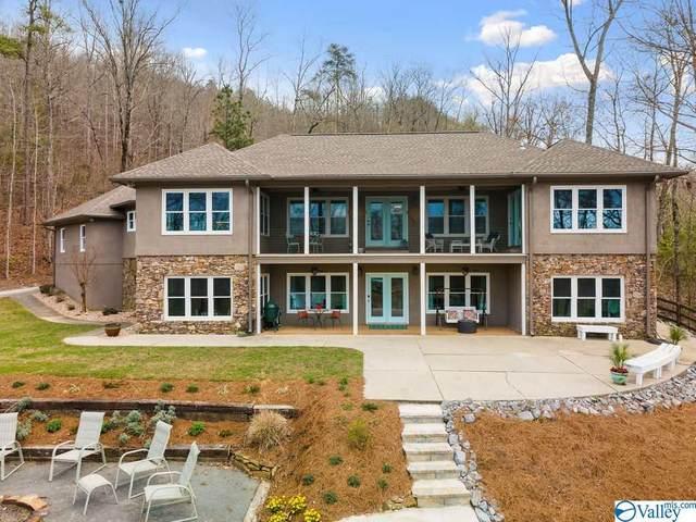 1150 County Road 291, Cullman, AL 35057 (MLS #1777418) :: MarMac Real Estate