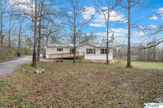740 County Road 478, Centre, AL 35960 (MLS #1777660) :: Dream Big Home Team | Keller Williams