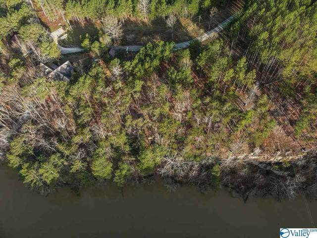 Lot #13/13A Wilson Circle, Double Springs, AL 35553 (MLS #1777676) :: Rebecca Lowrey Group