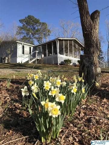 258 County Road 941, Cedar Bluff, AL 35959 (MLS #1777743) :: Southern Shade Realty