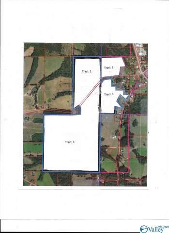 104 County Road 141, Ider, AL 35981 (MLS #1777797) :: Amanda Howard Sotheby's International Realty
