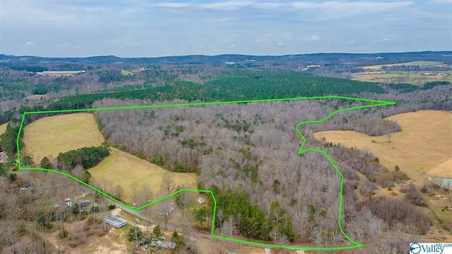 811 County Road 247, Fort Payne, AL 35967 (MLS #1777811) :: MarMac Real Estate
