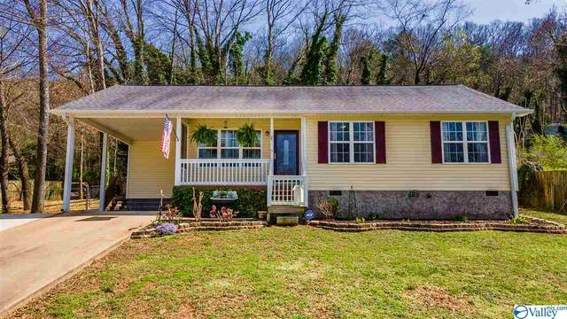 207 Tyler Avenue, Fort Payne, AL 35967 (MLS #1777826) :: Southern Shade Realty
