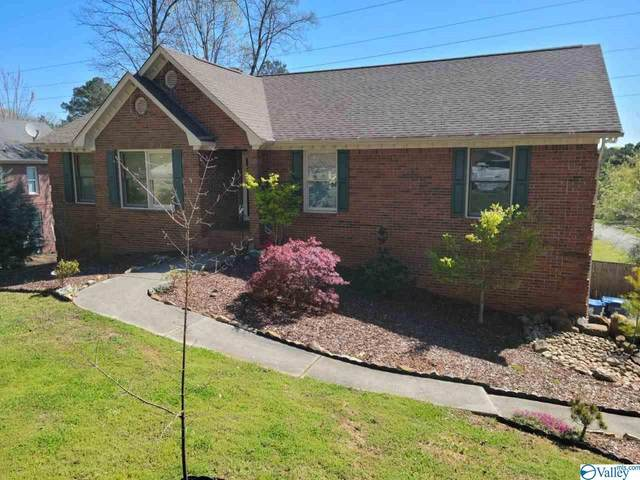 126 Joey Road, Owens Cross Roads, AL 35763 (MLS #1777867) :: Rebecca Lowrey Group