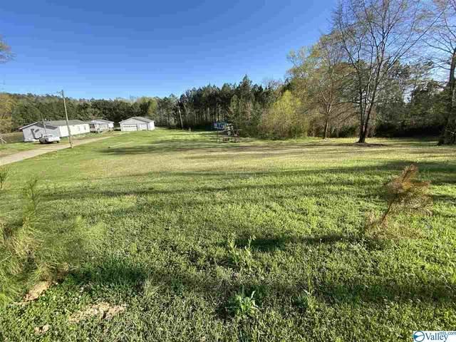 2162 Six Foot Road, Ohatchee, AL 36271 (MLS #1778016) :: MarMac Real Estate