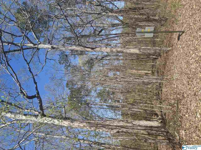 Lot 35 County Road 249, Leesburg, AL 35983 (MLS #1778021) :: Amanda Howard Sotheby's International Realty