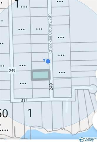 Lot 37 County Road 249, Leesburg, AL 35983 (MLS #1778024) :: Amanda Howard Sotheby's International Realty