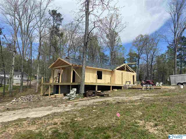 915 County Road 349, Leesburg, AL 35983 (MLS #1778042) :: Dream Big Home Team | Keller Williams