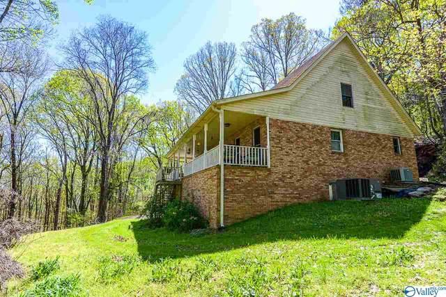 1336 NE Thompson Road, Decatur, AL 35603 (MLS #1778120) :: MarMac Real Estate