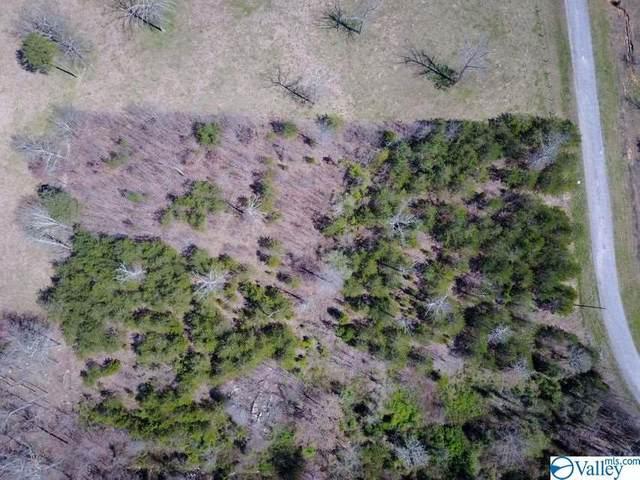 13 Hunter Trail, Trenton, GA 30752 (MLS #1778194) :: The Pugh Group RE/MAX Alliance