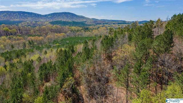 County Road 120, Gaylesville, AL 35973 (MLS #1778271) :: Coldwell Banker of the Valley