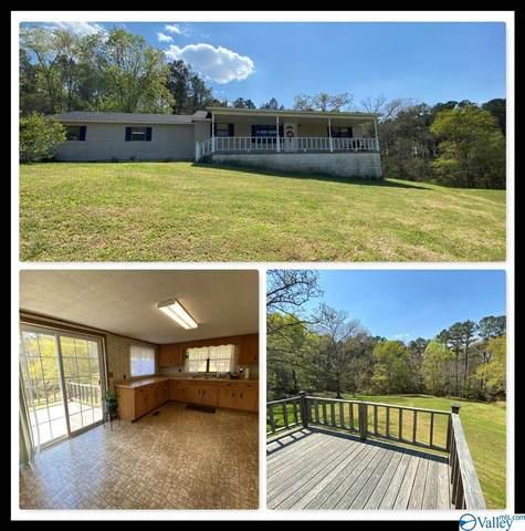 2860 Wester Street, Gadsden, AL 35903 (MLS #1778304) :: Green Real Estate
