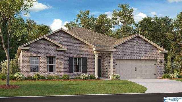 13838 Lannister Lane, Athens, AL 35613 (MLS #1778483) :: Southern Shade Realty