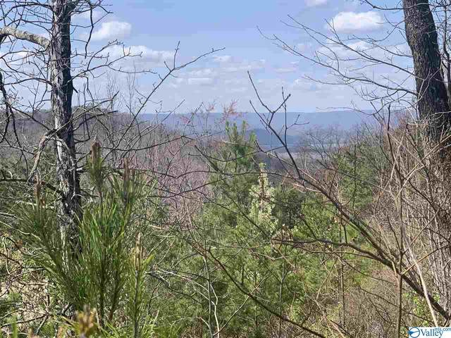 0 County Road 818, Bryant, AL 35958 (MLS #1778624) :: Green Real Estate