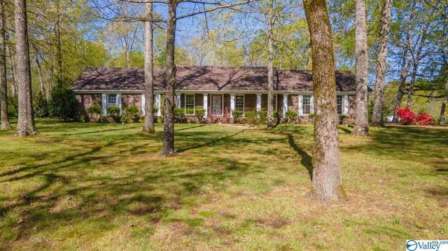 47 Wright Road, Albertville, AL 35950 (MLS #1778665) :: The Pugh Group RE/MAX Alliance