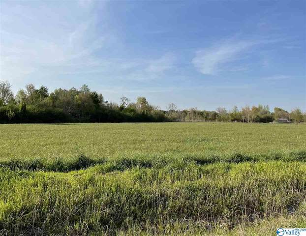 337 County Road 357, Pisgah, AL 35765 (MLS #1778717) :: Green Real Estate