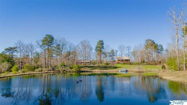1002 Alabama Hwy 117, Mentone, AL 35984 (MLS #1778755) :: The Pugh Group RE/MAX Alliance
